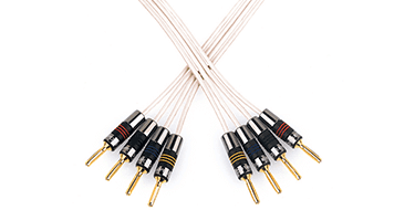 Speaker Cables & Interconnects